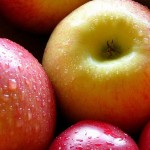 A Brief History of Apple Fruit